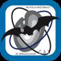 Assemblea Ordinaria SNS/INS - Biella